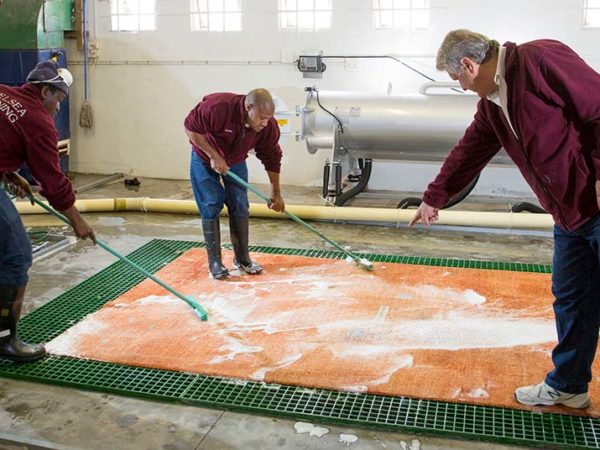 Chelsea's Unbeatable Process for Cleaning Rugs