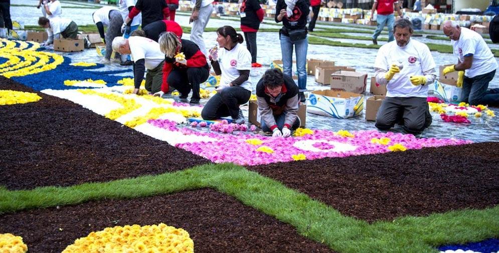 making the flower carpet