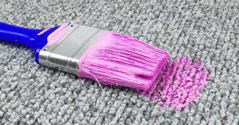 paint spilt paintbrush carpet