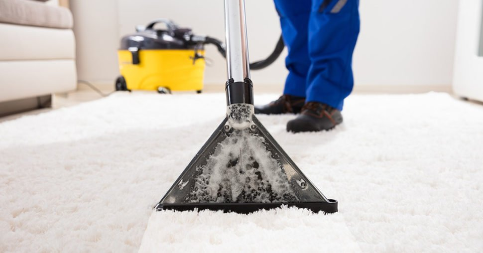 hire rent carpet cleaner professional